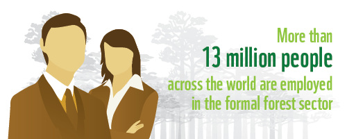 13 million people employed in forest sector