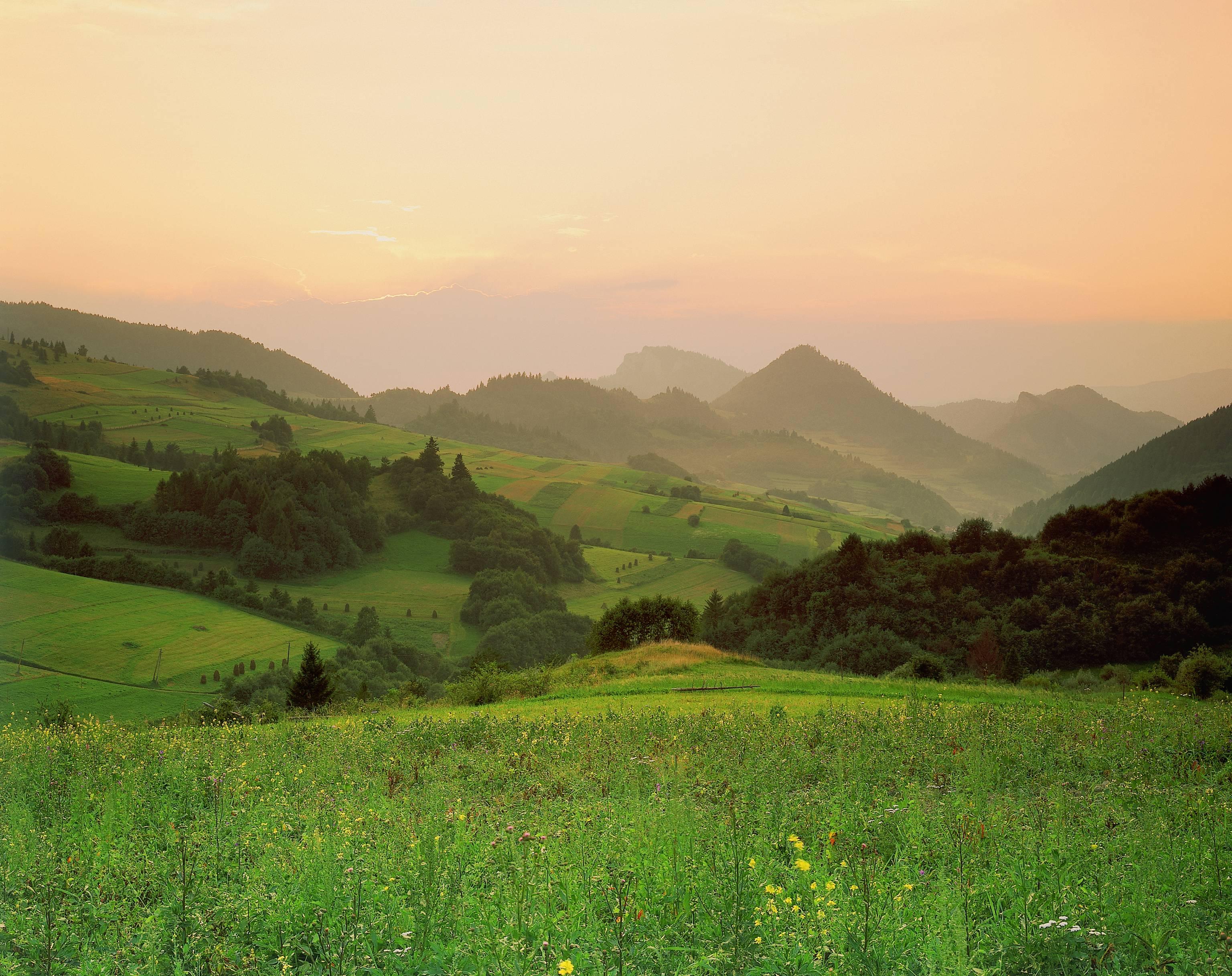 Národný park Poľana - Popp & Hackner / WWF