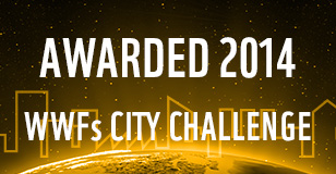 City Challenge Winner 2014