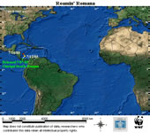 Map locator for this leatherback. Click to view an enlarged animated version. The latest positional ... / ©: WWF / CCC