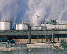 The EU's Emissions Trading Directive will cap CO2 emissions from a range of industrial sectors, including paper manufacturers such as this paper mill in Sweden.