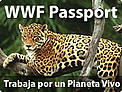  / &copy;: WWF-Canon / Y.-J. Rey MILLET