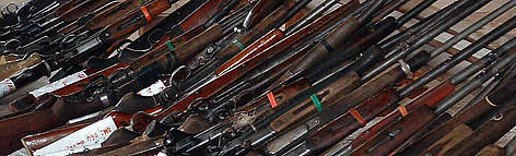 Row of guns lined up together.  rel=