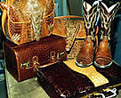 If you like those fancy cowboy boots or little evening bag, be aware that some native wild populations of crocodiles and snakes are in dire straits and critically endangered.