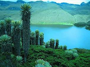 Laguna del Otún in Colombia