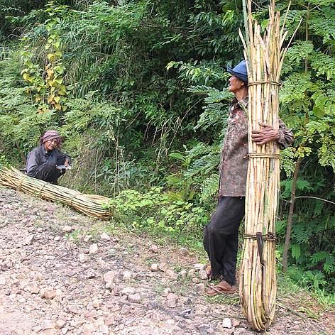 / ©: Khou Eang Hourt / WWF-Cambodia