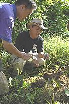 Raymond Alfred collecting elephant dung. / &copy;: WWF-Canon / Jan Vertefeuille