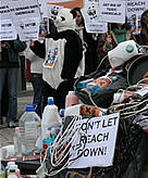 WWF Supporters demonstrate in Strasbourg in favour of a strong new chemical law (REACH) / ©: WWF