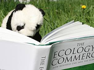 Panda reading. / &copy;: WWF