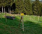Bear-proof fencing for beehives. Italy