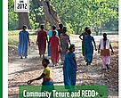 Publication cover: Community tenure and REDD+