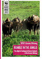 Rumble in the Jungle - The plight of endangered hooved animals in the Greater Mekong