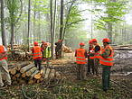 Responsible forest management in Eastern Europe © WWF-DCP