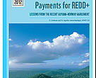 Report: Reference Levels and Payment for REDD+