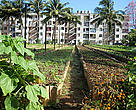 Rotonda de Cojimar - Urban Garden Havana (Cojimar neighbourhood)