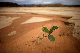 / ©: Dado Galdieri / WWF Canon