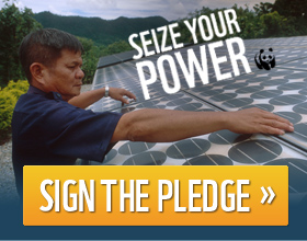 Seize Your Power - Sign the pledge / ©: Adam Oswell / WWF-Canon