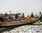 Artisanal fishing in Senegal makes up a large part of the country's national budget.