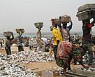 The new marine protected areas bring new hope for Senegalese fishermen, whose catches have declined drastically in the last five decades.