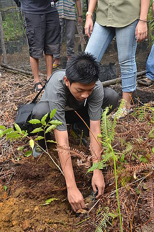 Student from SMA Bhayangkari Pontianak helping out the corridor restoration project by planting a ... / &copy;: WWF-Indonesia Sugeng Hendratno