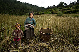 A woman working in Langtang to provide for her family's daily needs.