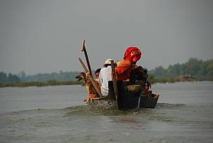 / ©: Gerard Ryan / WWF-Cambodia