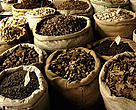 Medicinal plants' market. Chengdu, Sichuan Province, China.