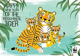 e-cards radiola illustration tigers  / ©: WWF - Radiola