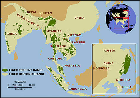 impact malayan union Malayan union: 1946  impact on bilateral and regional stability  hearts and minds in guerilla warfare: the malayan emergency 1948–1960.