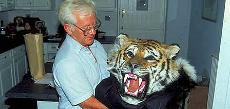 Tiger skin seized at customs. rel=