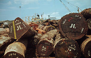 Timber awaiting export to Europe, Abidjan, Ivory Coast. / &copy;: WWF-Canon / Adam MARKHAM