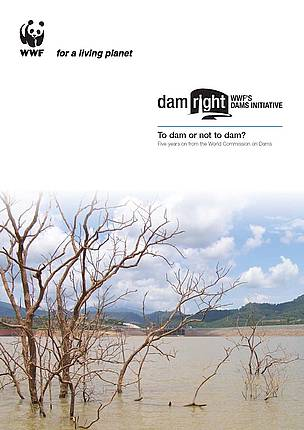 To dam or not to dam? Five years on from the World Commission on Dams