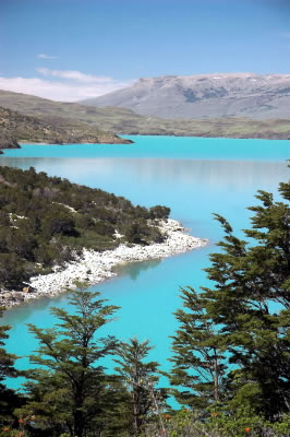 Azure glacier melt water in Lago Nordenskjold bordered by Patagonian forest. Lago Nordenskjold, ... / &copy;: WWF-Canon / James FRANKHAM