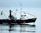 A trawler in the Bering Sea.