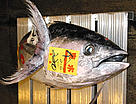 Tuna for sale at the Tokyo Fish Market, Japan / &copy;: WWF