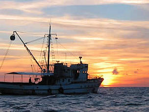 A tuna fishing vessel