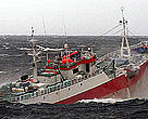 The Uruguayan-flagged, Viarsa 1, suspected of fishing illegally for Patagonian toothfish in Australian Antarctic waters, was apprehended in August 2003 after a marathon hot pursuit across the Southern Ocean. The vessel was apprehended with assistance from the South African and United Kingdom authorities, and brought back to Australia. 