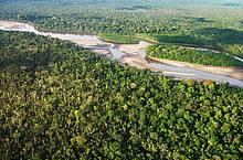 Vista aérea Amazonía ecuatoriana