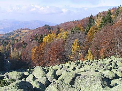 Autumn landscape from Vitosha Nature Park, Bulgaria / ©: WWF DCP BG Archive
