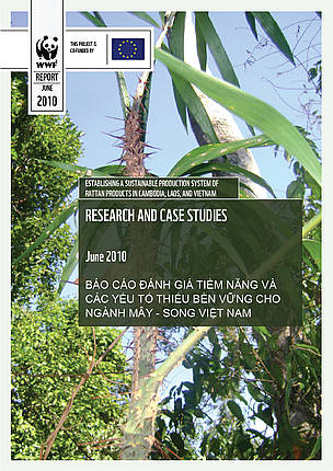 Cover for Vietnam Country Assessment