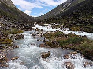 Wangchuk Centennial Park / ©: WWF Bhutan