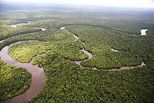 / ©: Brent Stirton / WWF Perú