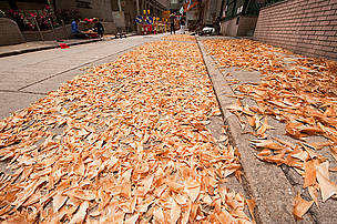 Sharks fins laid out on the streets to dry and for trimming and cleaning before selling. Sheung Wan, Hong Kong