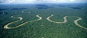 Rio Pinquen, Manu National Park, Amazon Rainforest, Peru.  / ©: WWF-Canon / André BÄRTSCHI