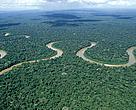 Rio Pinquen, Manu National Park, Amazon Rainforest, Peru.
