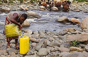 A woman collecting water from the river that flows from the Rwenzori Mountains, Uganda.