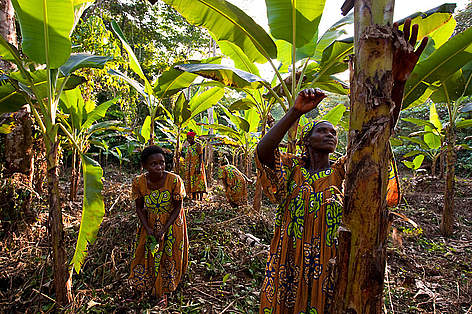 Community Based Natural Resource Management Congo