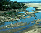Madagascar The Mandrare River, greatly reduced after three years of drought, ori- ginates in Andohahela SE Madagascar