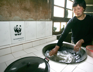 Wood saving stove. / &copy;: WWF China