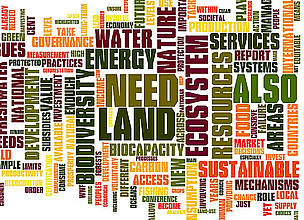 Key terms used in the 2010 Living Planet Report